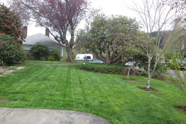 2737 SE 60 Ave- Front Yard